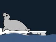 Les éléphants de mer, sentinelles du changement climatique en milieu hostile